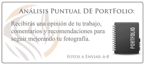 analsis-puntual-portfolio_500