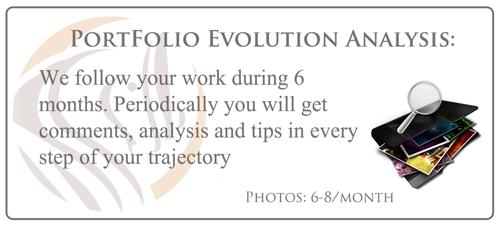 portfolio-evolution-_500